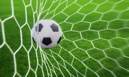 IL RIEPILOGO del weekend: tutte le formazioni, i gol e le classifiche dalla Serie D alla Terza, passando per la Serie B di Calcio a 5