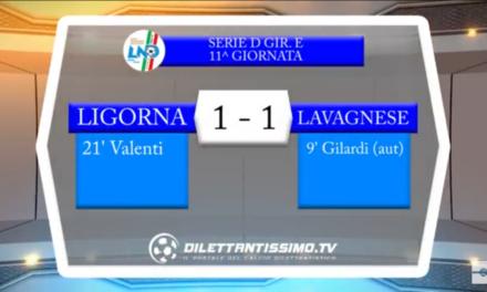 Video: Ligorna-Lavagnese 1-1. Seri D 11ª  Giornata. Gara sospesa