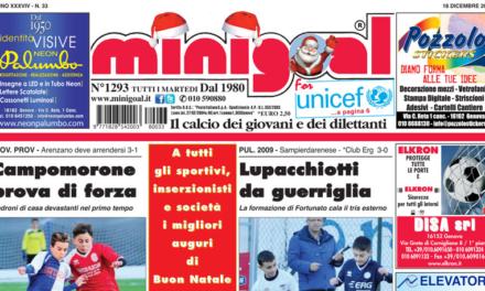 La scomparsa di Lino Di Vincenzo: le nostre condoglianze ai colleghi di Minigoal